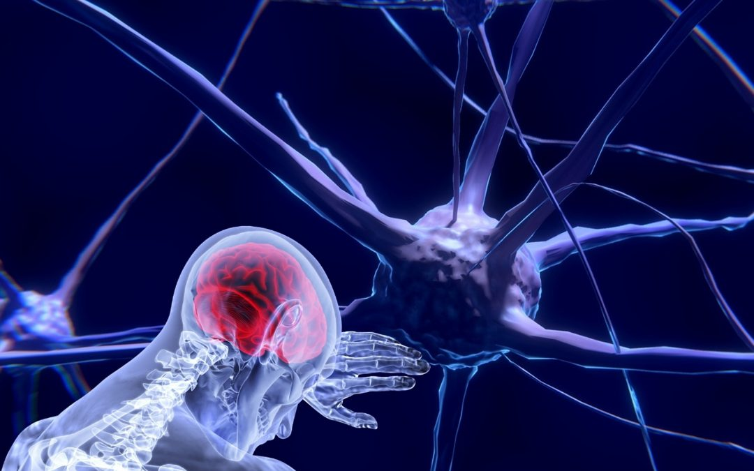 Neurology, cognitive psychology and self observation